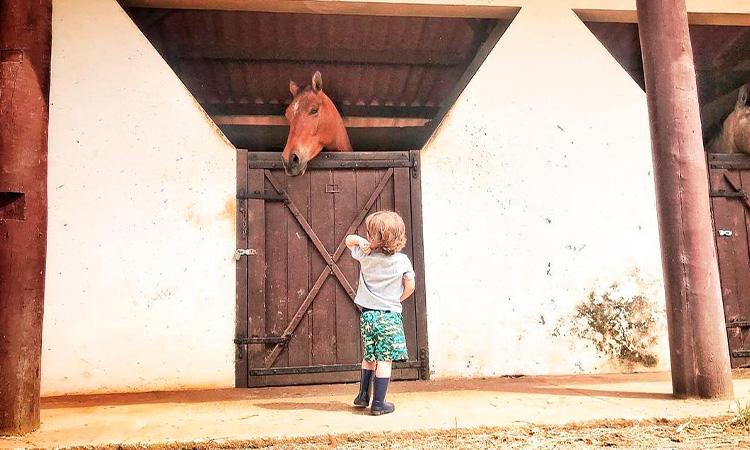 Viagem à fazenda com crianças Agência Pequenos Exploradores It Mãe
