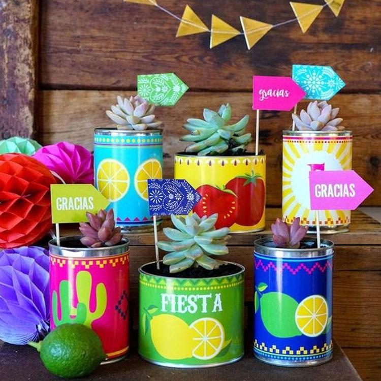 Cactos festa mexicana em casa Mi Casa It Mãe
